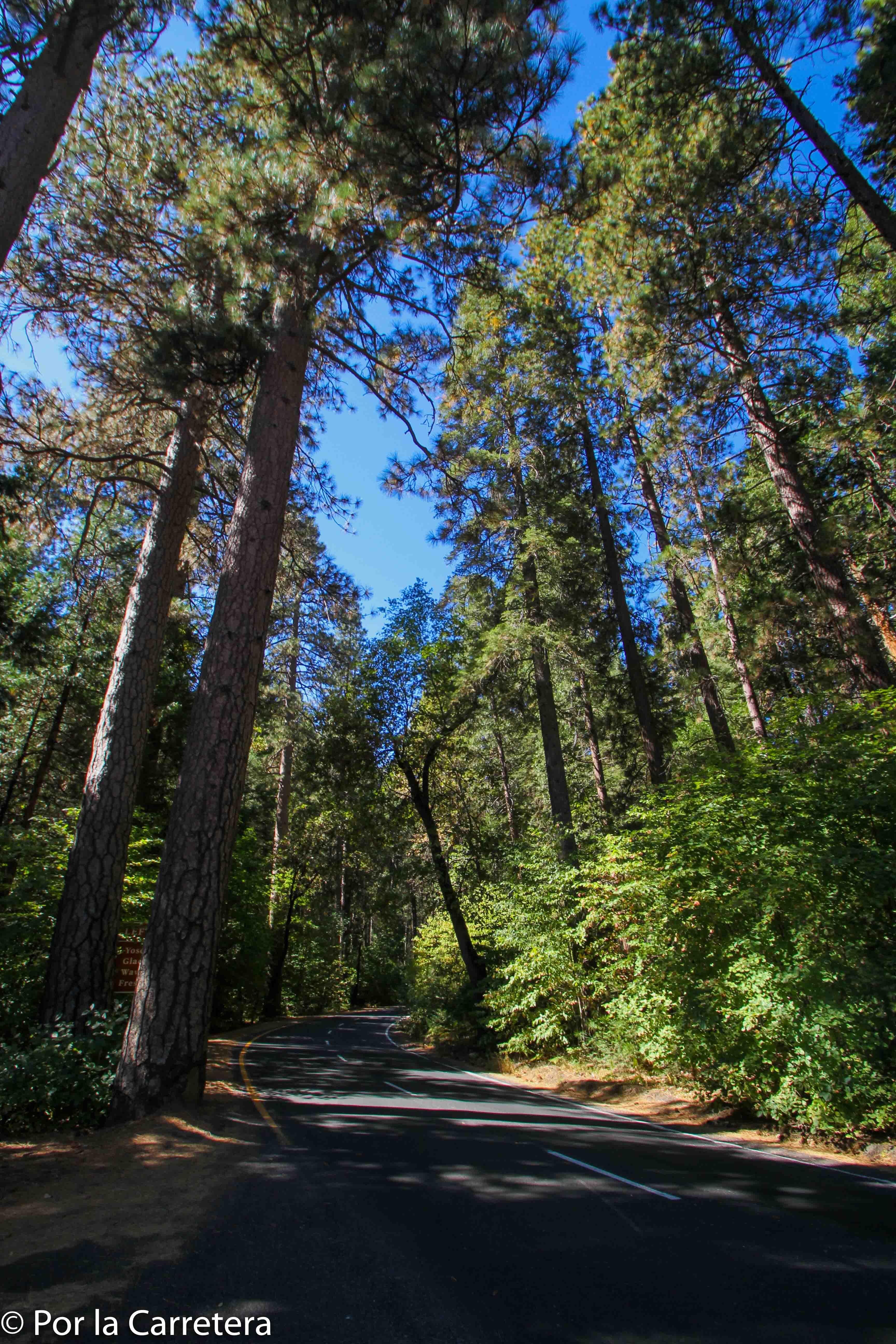 yosemite parque nacional